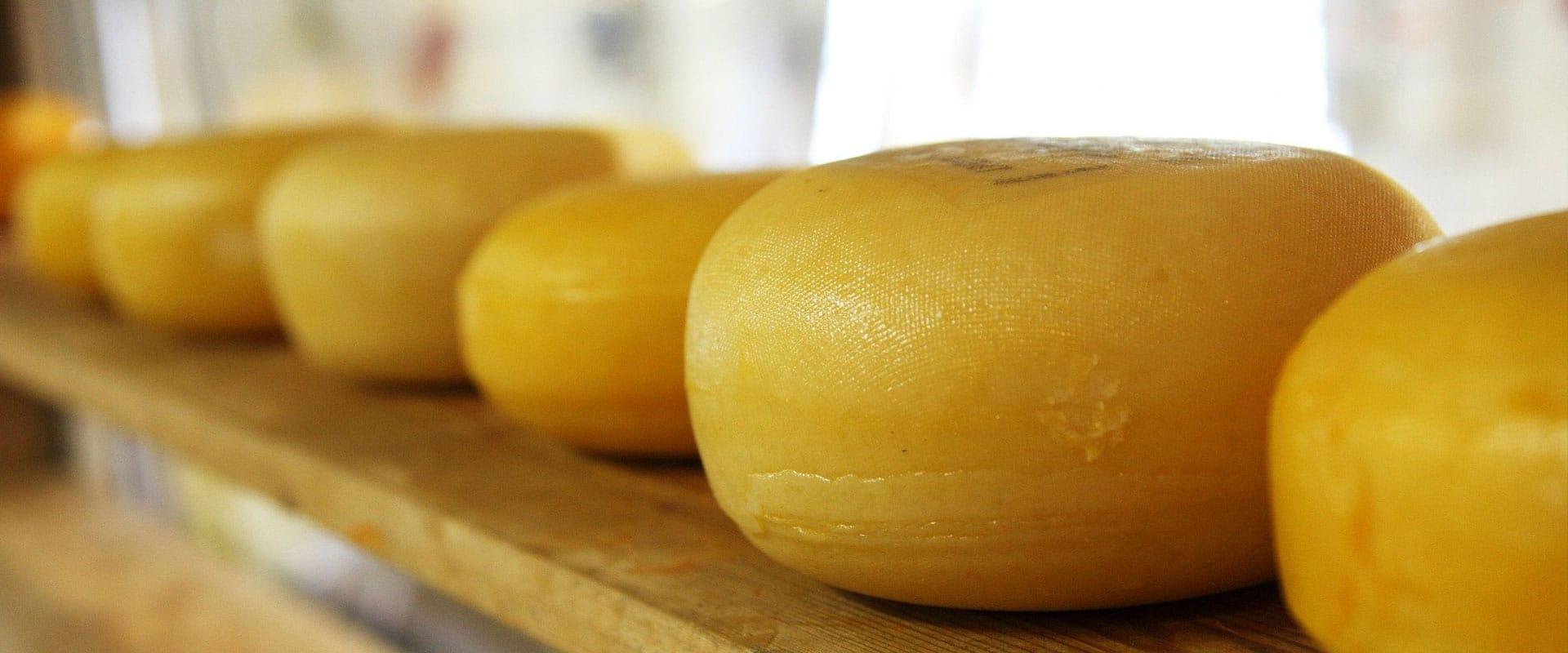 Kaas- en zuivelboerderij Van Winden