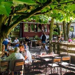 terras van Café du Midi onder de platanen op een zonnige dag in Delfgauw